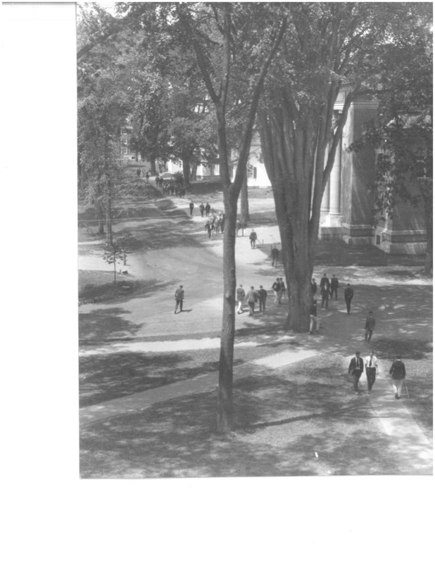 """These photographs depict the large stands of American Elm trees that once towered above Dartmouth's campus as well as their removal in the 1950s and 1960s when the trees began dying following the accidental introduction of Dutch Elm Disease (DED). Prior to the introduction of DED, American Elm trees were so plentiful around Hanover that Dartmouth was known as the """"campus of a thousand elms."""" As shown in these photographs, massive American elm trees once encircled the College Green, providing shade to students as they passed in front of Webster Hall (now home to Rauner Library). Until Dutch elm disease made its appearance, the life expectancy of an American elm was approximately 400 years (to see a photograph of a famous """"old elm"""" which stood in front of famous Dartmouth alumni Daniel Webster's home in the late 1800s, see the fifth  image in the attached PDF file). Today, American elms rarely live to reach 100 years old. Originally native to Asia, DED came to America in the 1920s when shipments of logs cut in the Netherlands brought with them fungus-carrying bark beetles. Since the arrival of these beetles, DED has devastated native elms without resistance to the disease. Of the estimated 77 million elm trees in North America in 1930, over 75% had been lost by 1989. While there may not be a thousand, Dartmouth's campus is still home to a few surviving elm trees, thanks to the help of periodic anti-fungal treatments and their isolation from one another; they stand as solemn testaments to the forests of years past. Today, the World Conservation Union estimates that globally, introduced invasive species like Dutch elm fungus may be as damaging on a global scale as habitat loss."""