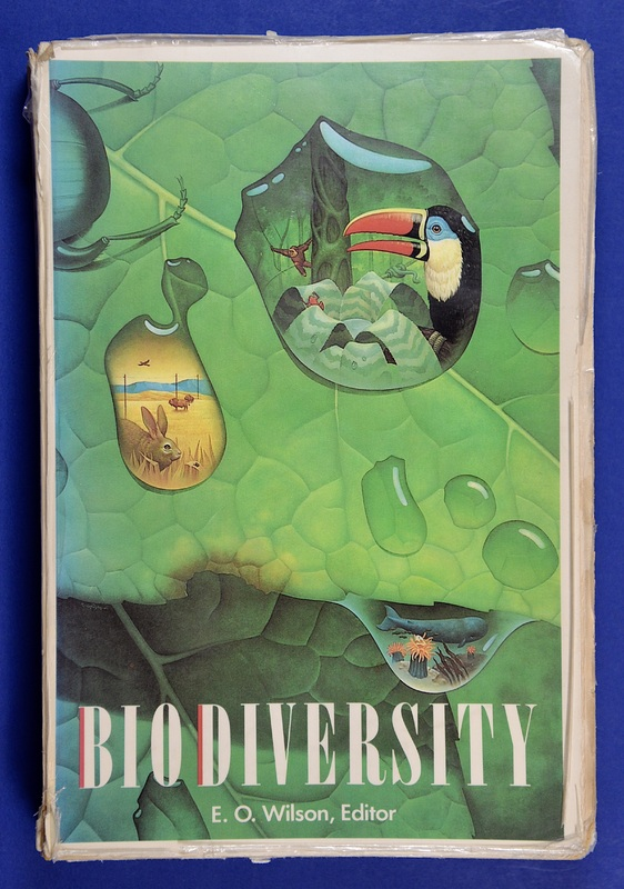 "The 1980s witnessed a rise in concerns related to species conservation, due to growing awareness of the close link between economic development, deforestation, and extinction. This shift is evidenced by this publication by famed biologist, naturalist, and writer Edward O. Wilson which features the first appearance of the word ""biodiversity"" (defined as the variety of life in the world).  Wilson writes, ""The diversity of life forms, so numerous that we have yet to identify most of them, is the greatest wonder of this planet... The book before you offers an overall view of this biological diversity and carries the urgent warning that we are rapidly altering and destroying the environments that have fostered the diversity of life forms for more than a billion years."""